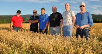 BETRAKTER HAVREFELTET: Fra venstre, Jon Olav Forbord (arrangør), Olav Aspli (FK-Agri), Bernt Eggan (FK-Agri), Morten Hedstein (Skatval Landbrukslag), Vebjørn Reinsberg (Vebjørn havregryn), og Johan Olav Hegge (Alstadhaug havredyrkelag).
